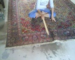 Rug dust removing