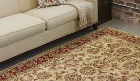 Rug an Carpet Deodorizing